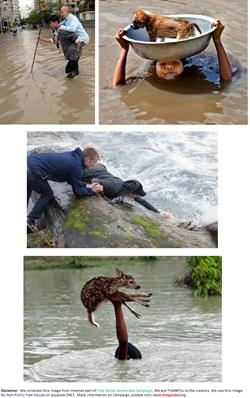 Humanity-Helping