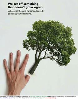Trees-WeCutOffSomethingThatDoesnotGrowAgain